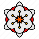 flower, floral, chinese, new, year