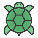 animal, china, chinese, new, turtle, year