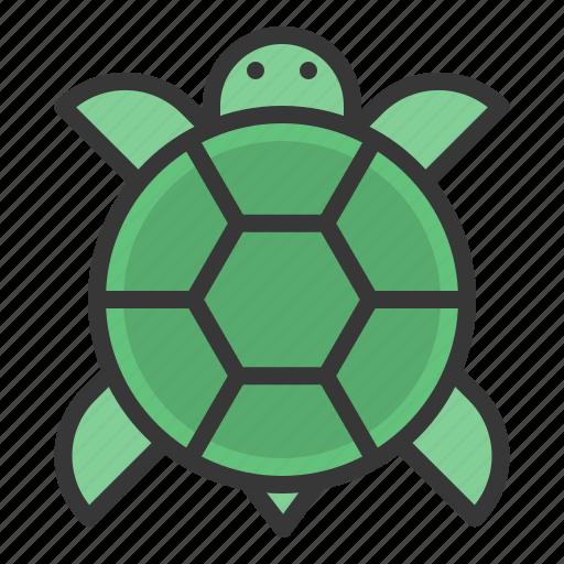 animal, china, chinese, new, turtle, year icon
