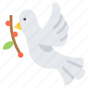 bird, christian, dove, faith, olive, peace icon