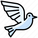 animals, bird, dove, fly, peace, pigeon, wings icon