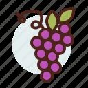 christian, grapes, religion icon
