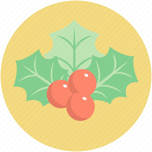 christmas mistletoe, christmas ornaments, mistletoe, plant, xmas decorations icon