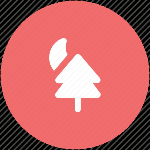 fir tree, forest, moon, night, park, pine tree, sun, tree icon