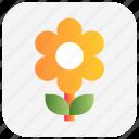 christmas, flower, nature, sunflower icon