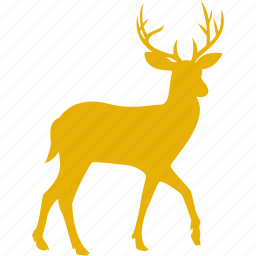 animal, christmas, deer, elk, moose, reindeer, xmas icon