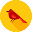 bird, bullfinch, christmas, finch, merry, winter, xmas icon