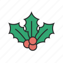 berry, christmas, winter icon