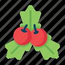 cherry, christmas, decoration, holly, leaf, mistletoe, xmas
