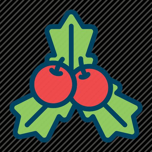 cherry, christmas, decoration, holly, leaf, mistletoe, xmas icon