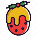 christmas, decoration, fruit, gift, winter icon