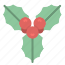 christmas, decoration, mistletoe, nature, ornament icon