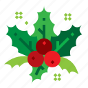 christmas, decorations, holly, mistletoe icon