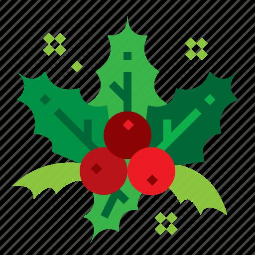 Christmas Decorations Holly Mistletoe Icon