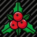 christmas, decoration, mistletoe, nature, ornament
