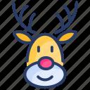 christmas, deer, fauna, reindeer, xmas