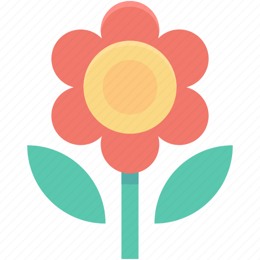 Daisy, daisy flower, floral, flower, nature icon - Download on Iconfinder