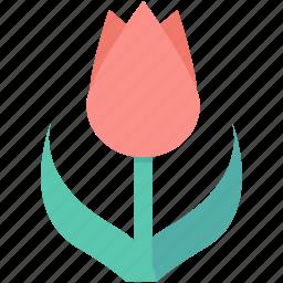 flower, garden, nature, rose, tulip icon