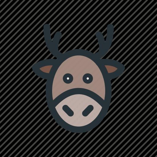 celebration, christmas, decoration, deer, xmas icon