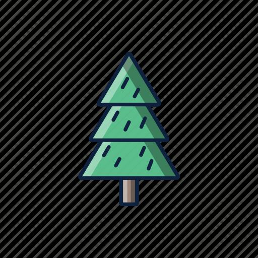 christmas, natural, pine, tree, winter icon