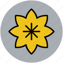 decorative flower, ecology, flower, nature, spring flower, sunflower icon
