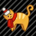 animal, cat, christmas, new year