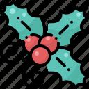 christmas, decoration, new year, ornament, winter, xmas, fruit