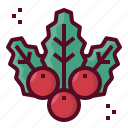 berries, decoration, mistletoe, ornament, christmas, xmas icon