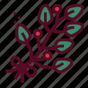 christmas, mistletoe, plants, xmas, decoration icon