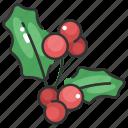 berry, christmas, decoration, mistletoe, nature, ornament