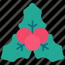 berry, christmas, holiday, leaves, mistletoe, new year, xmas