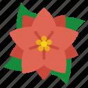 poinsettia, christmas, decoration, flower, winter, floral, plant icon