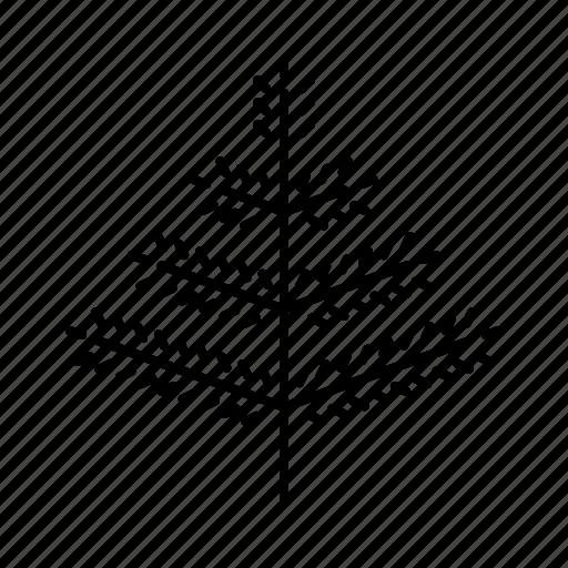 christmas, christmastree, decoration, fir, holidays icon