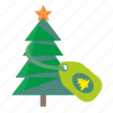 christmas, fir, plant, star, tradition, tree