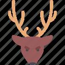 christmas, deer, snowflake, winter, xmas