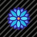 autumn, chrysanthemum, daisy, flower, flowering, marguerite, outline icon