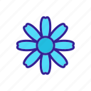 autumn, blooming, chrysanthemum, daisy, flower, flowering, outline icon