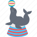 dolphin, dolphin circus, dolphin playing, fish icon