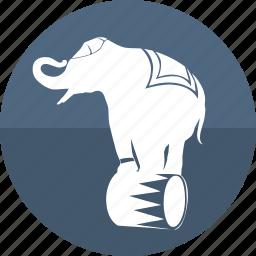 animal, circus, elephant, exercise, fair, show, zoo icon