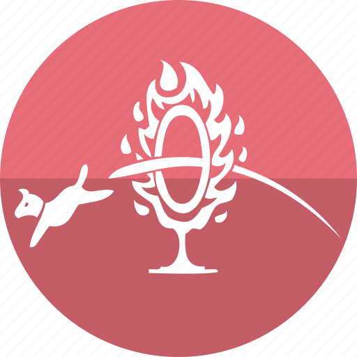animal, cat, cirque, dog, dog show, fire, fire rope icon