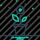 botany, foliage, gardening, greenery, greenstuff, plant, seedling icon