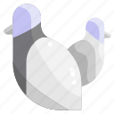 animal, animals, bird, dove, fly, park, pigeon