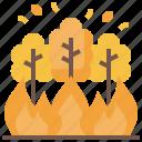 climate, disaster, forest, heatwave, natural, nature