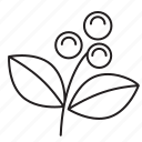bean, cafe, coffee, eco, ecology, environment, flower, fruit, green, leaf, plant, vegetal icon