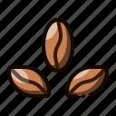 bean, caffeine, beans, coffee, cafe