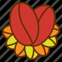 beans, coffee logo, fruit, organic, product, tea icon
