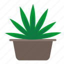 cannabis, home, leaves, plant icon