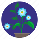 blue, bud, flower, home, plant, round icon