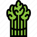 asparagus, food, fresh, healthy, vegetable icon