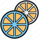 citrus fruit, food, fruit, half orange, orange slice icon